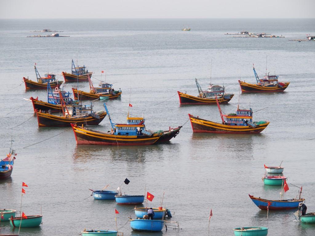 Les bateaux de pêche avec les navettes Thuyền thúng